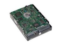 Hewlett Packard Enterprise HD/300GB U320SCSI 15000 RPM **Refurbished** 411089-B22BB-RFB - eet01