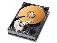 """MicroStorage 320GB 3,5"""" PATA 7200RPM *Refurbished Parts* AHDD018 - eet01"""