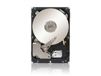 Seagate 1TB 128MB 7200RPM SAS 6Gb/s Constellation ES ST1000NM0023 - eet01