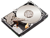 Seagate 1TB 64MB 7200RPM SATA 6Gb/s Constellation.2 ST91000640NS - eet01