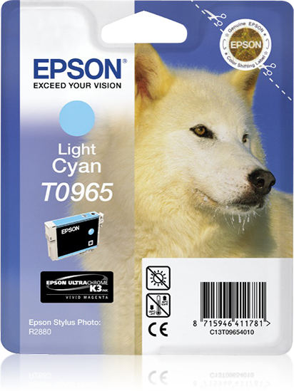 epson Epson R2880 Light Cyan Ink C13t09654010 - AD01