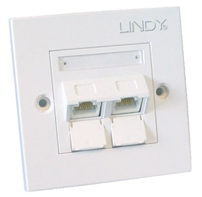 60572 lindy 2 Port Cat6 Angled Face Plate Single Rj4 - NA01